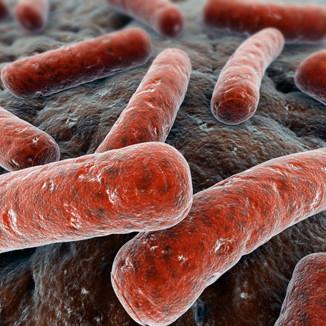 Ximg_bakterier-infektioner-influensa